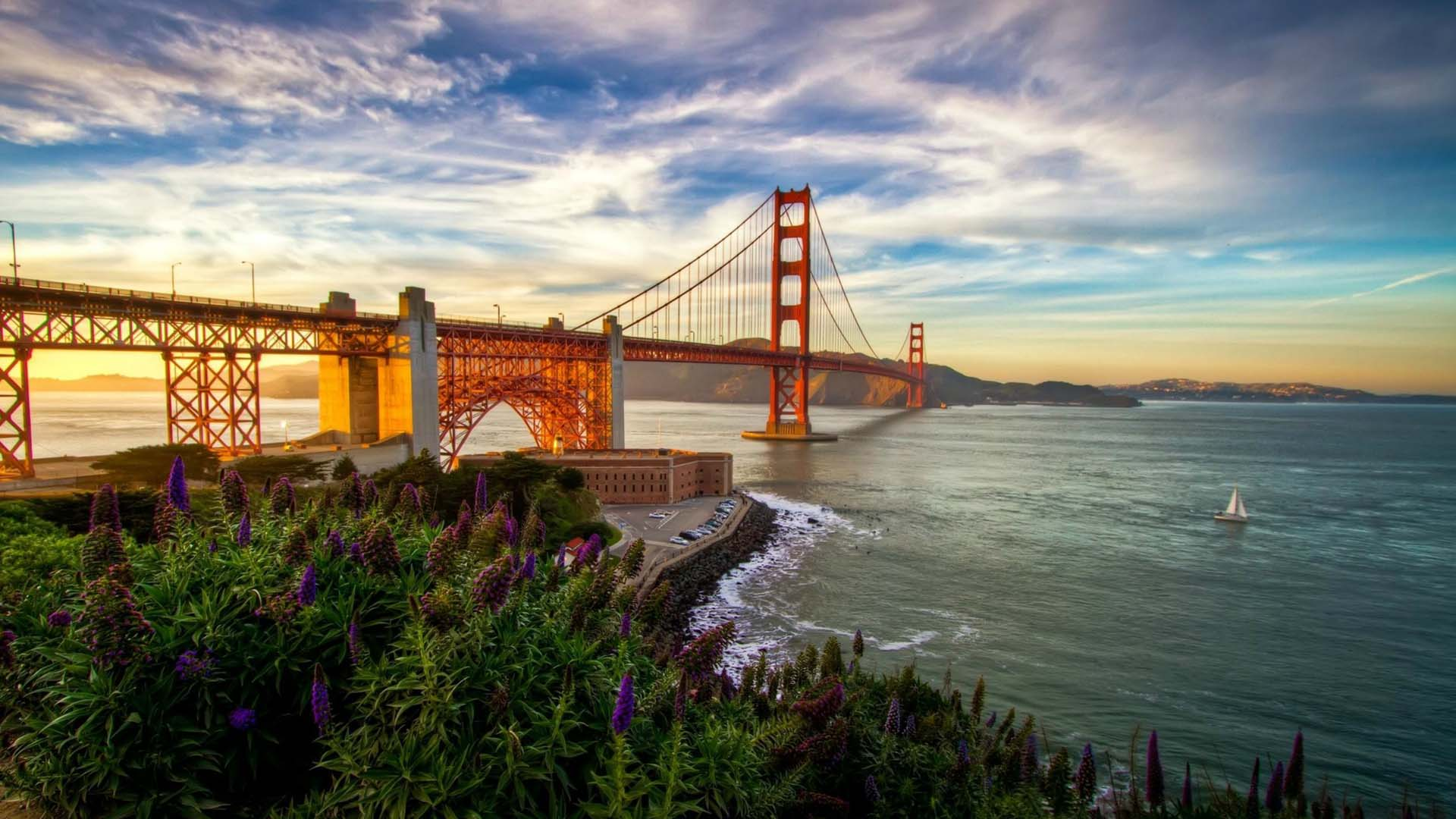 Summer In America: The Landscape In San Francisco