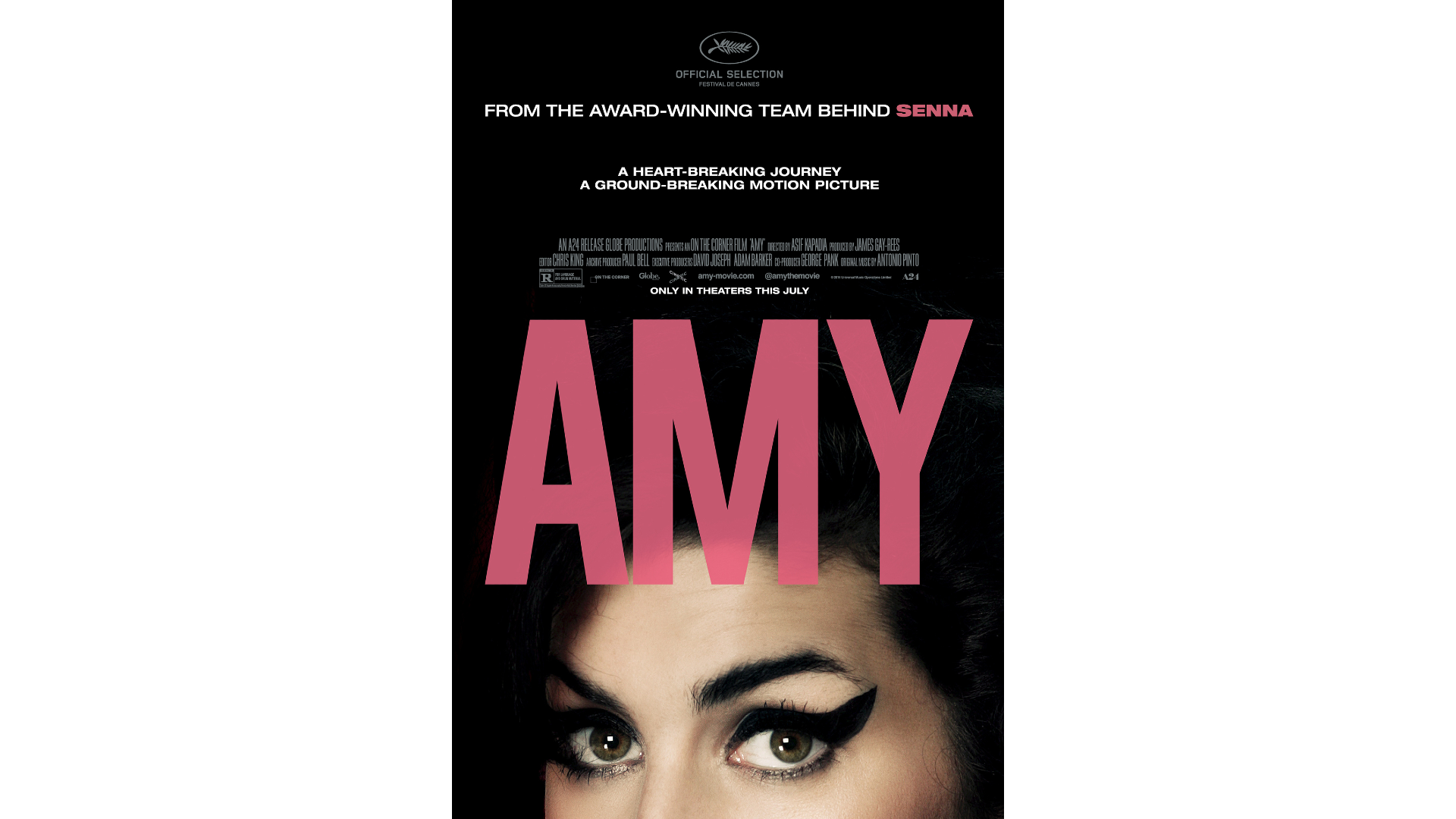 Amy netflix documentaries about artists