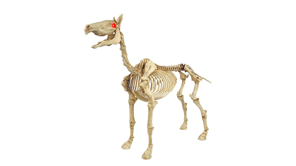 Standing Skeleton Pony