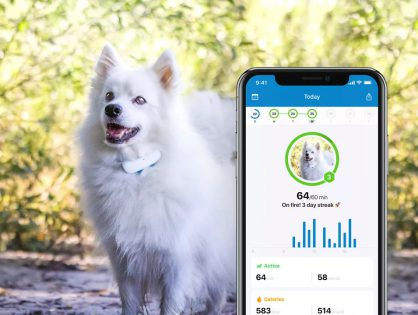 Tractive GPS Tracking For Dogs And Cats! Order Now To Get 7% OFF